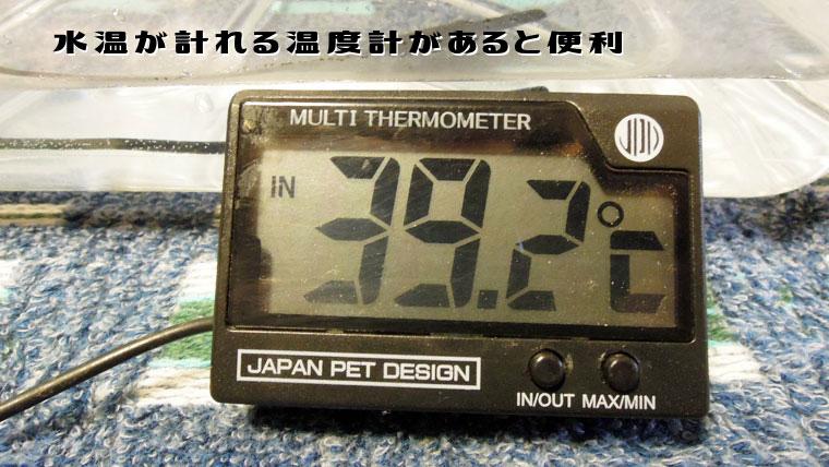 フトアゴの温浴水温度計