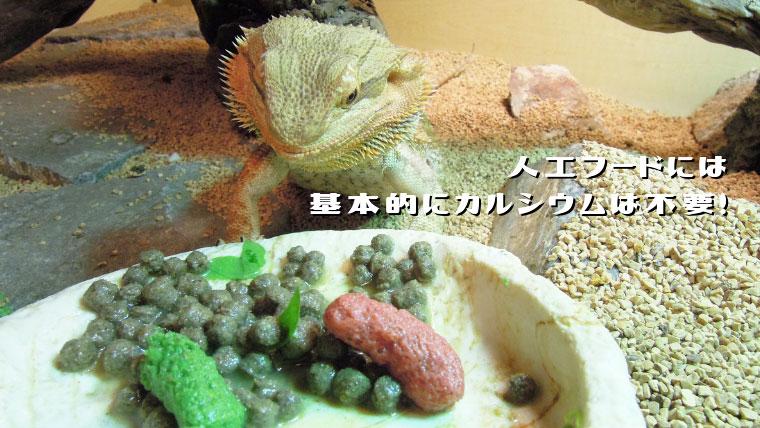 フトアゴの餌にはカルシウムをかけよう!人工フード