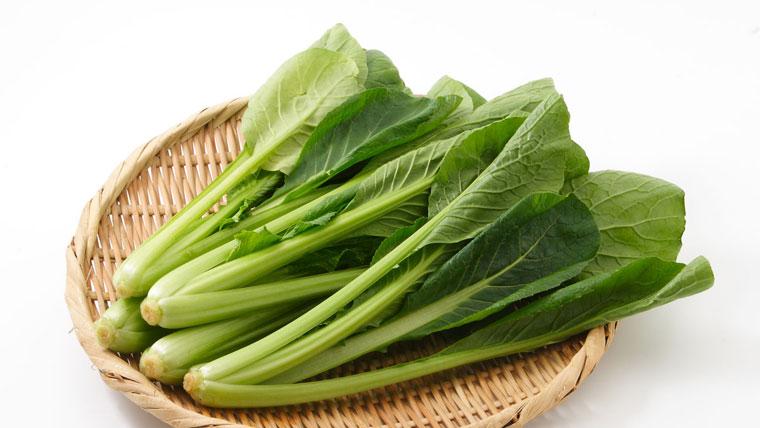 フトアゴの餌・野菜小松菜